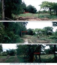 ที่ดินพร้อมสิ่งปลูกสร้างหลุดจำนอง ธ.ธนาคารกรุงไทย เชียงราย แม่จัน ศรีค้ำ