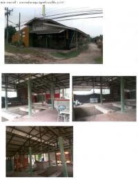 ที่ดินพร้อมสิ่งปลูกสร้างหลุดจำนอง ธ.ธนาคารกรุงไทย เชียงราย เวียงป่าเป้า สันสลี